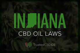 CBD Oil Indianapolis Is Popular Worldwide Due To Following Reasons