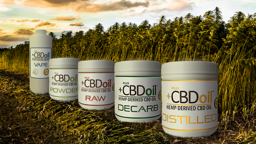 What makes CBD so popular now