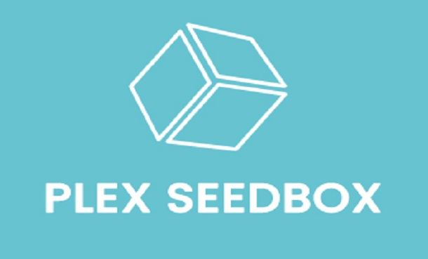 Seedbox for fast file transfer services
