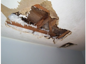 Ways That You Can Do To Get A Better Property Damage Settlement