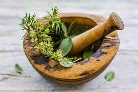 A Guide to Common Medicinal Herbs